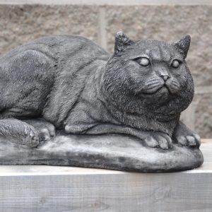 Patsas-makaava-kissa