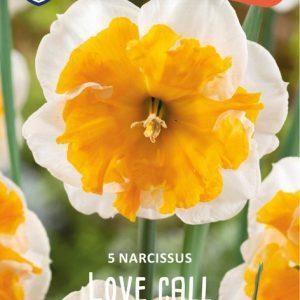 Narsissi-Love-Call