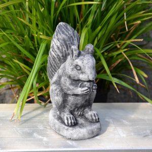 Patsas-orava