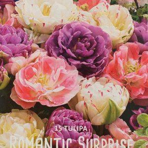 Tulppaani-romantic-surprise